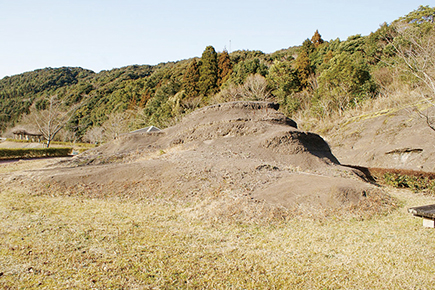 Black shale of the Kyoragi Formation