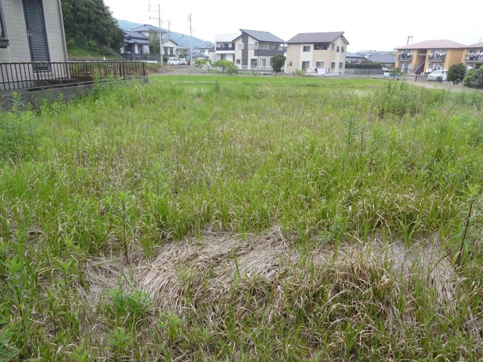 亀場町亀川751-5