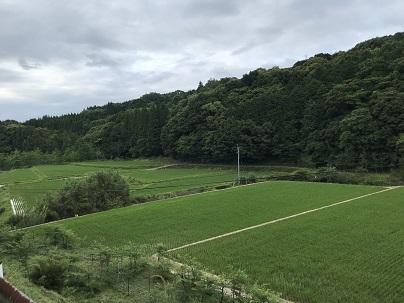 萩の平 3