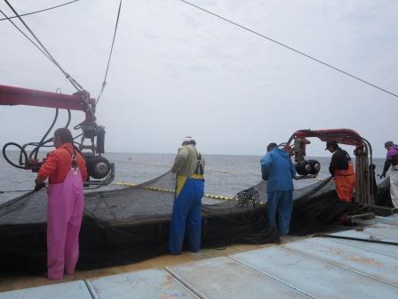 定置網漁風景1