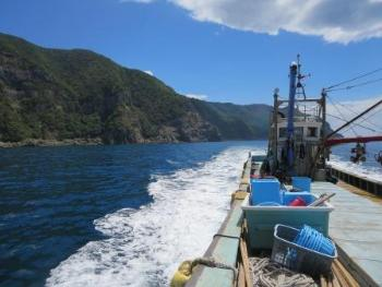 観光定置網漁 8-20-6