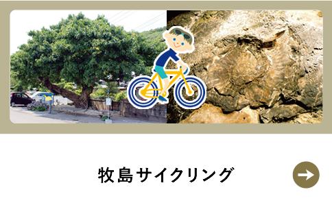 牧島サイクリング