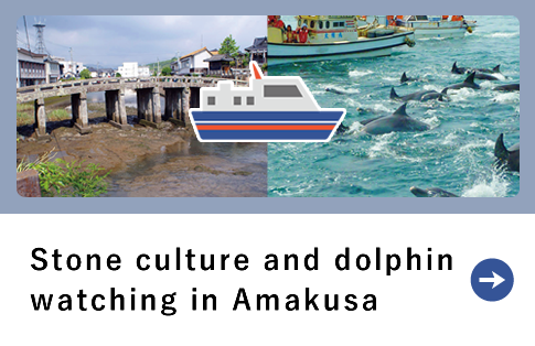 Stone culture and dolphin watching in Amakusa