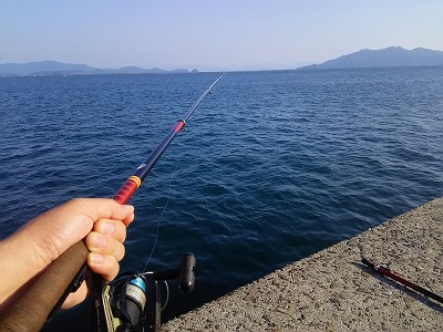 防波堤釣り