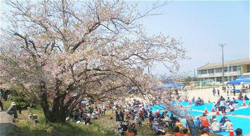 春まつり1