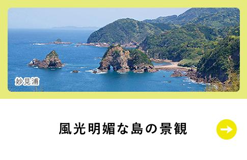 風光明媚な島の景観
