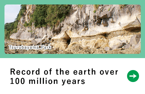 Record of the earth over100 million years