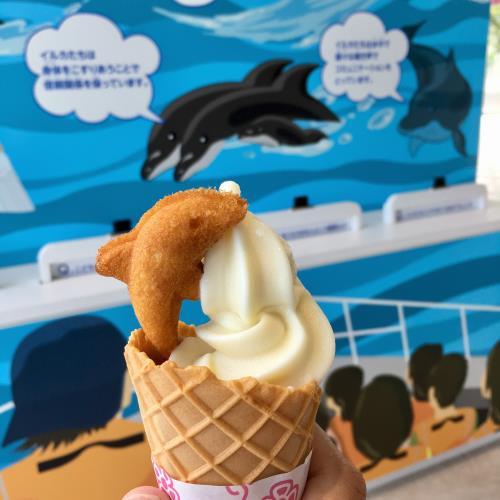 塩ソフトクリームの写真