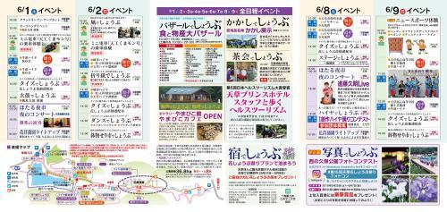 第15回天草花しょうぶ祭りチラシ(中)