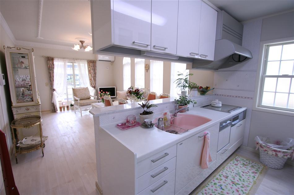 キッチン ピンク