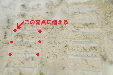 H29_田植え道具_02