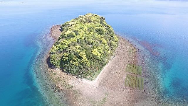 0.惣津島