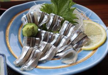 キビナゴ漁④