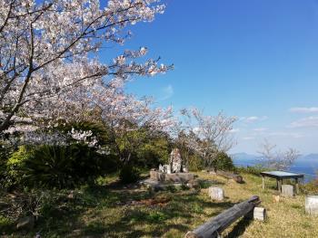 宮野河内に桜を探しに行きました