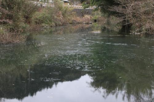 川面も凍る寒さ!?