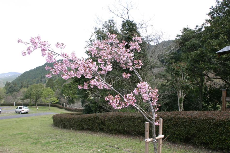 子守唄公園.JPG