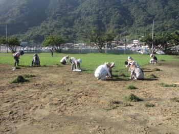 漁民グランド草刈り
