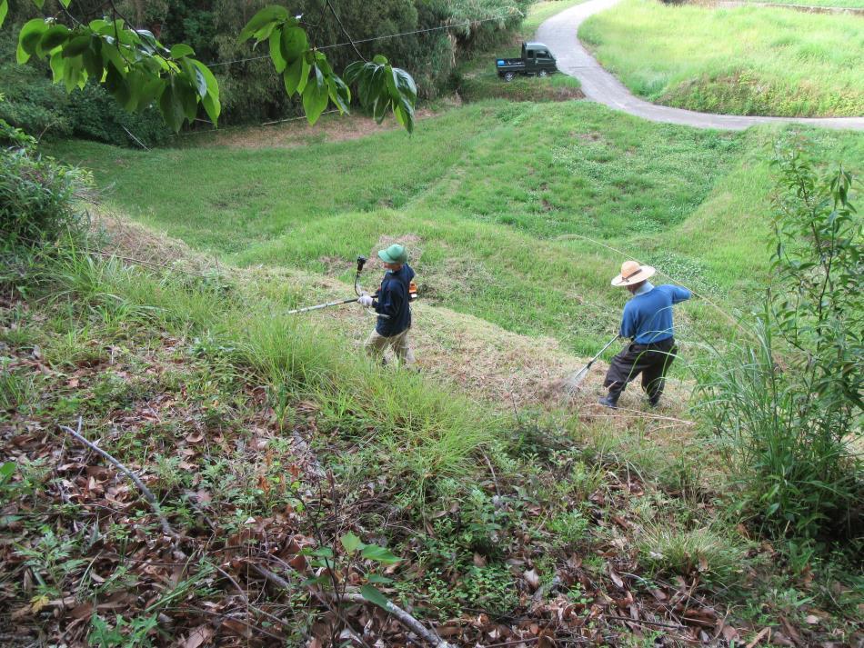 草刈作業3
