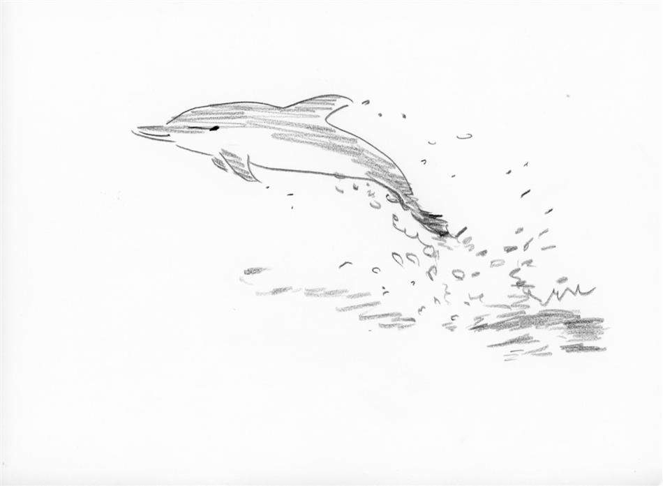 4位 イルカ(1頭)