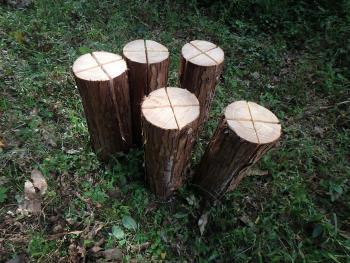 木のかおり製造所スウェーデントーチ