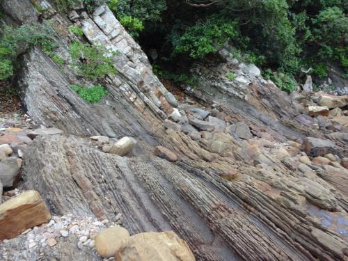砥石層の潮汐堆積物
