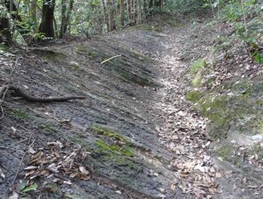 姫浦層群の地層と登山道(縮小950×720)(縮小380×288)