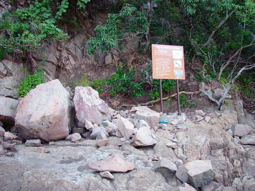 きょうどまりの恐竜化石発見地
