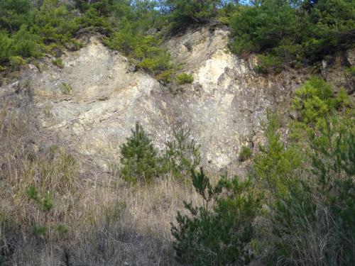あまくさ陶石採石跡の露頭