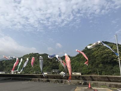 風の鯉のぼり ブログ2