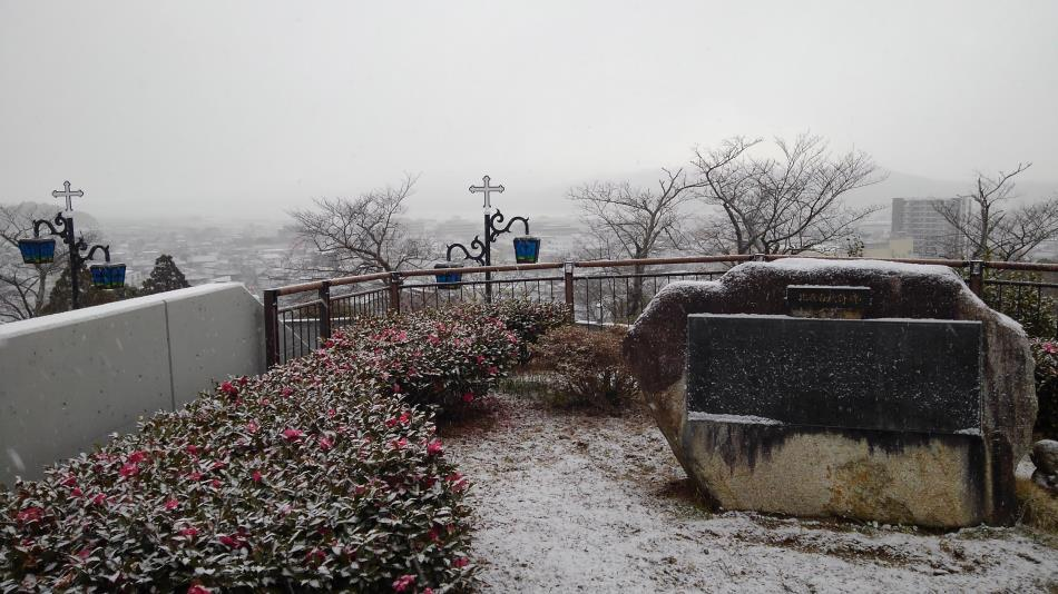 積雪(前庭)